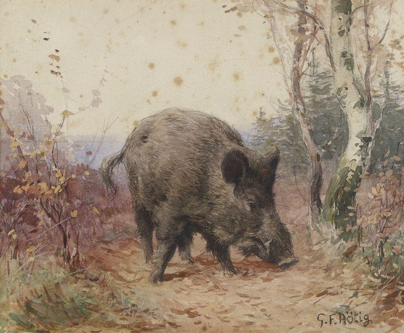 Lot 22 - Georges Frédéric ROTIG (1873-1961) - Sanglier dans le sous bois - Aquarelle signée [...]