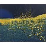 Phil Greenwood (B.1933) - 'Green Vale', 'Bramble Moon' and Hawksfoot', all signed, dated 1973,