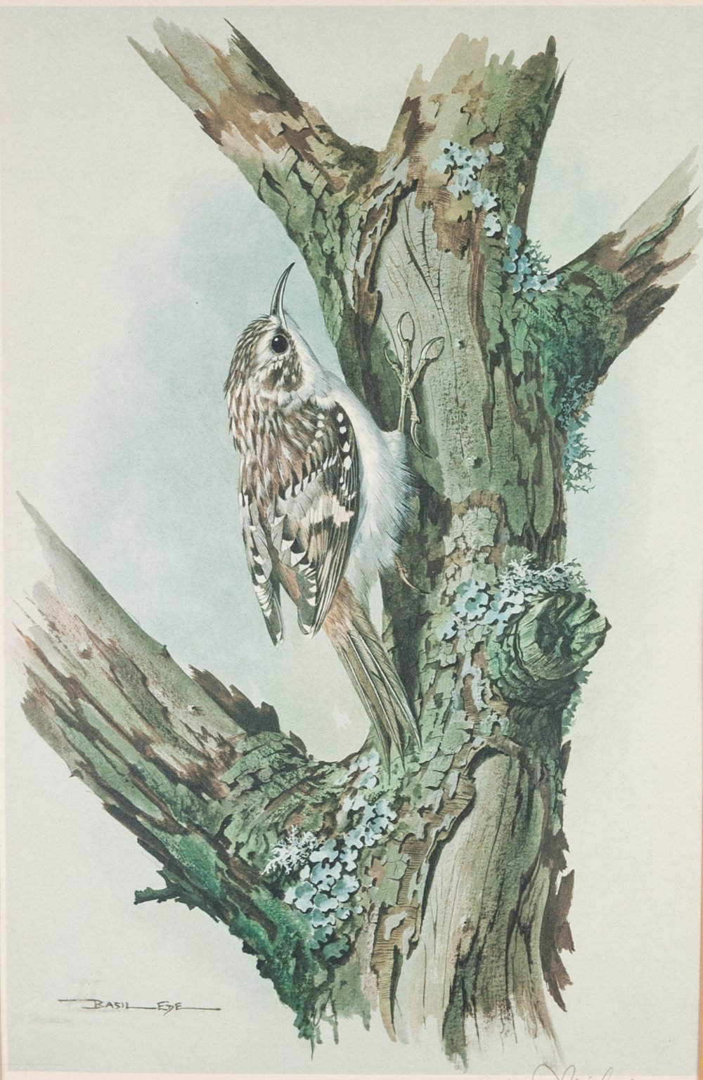 """Lot 197 - BASIL EDE (b. 1931) ARTIST SIGNED COLOUR PRINT Bird on a tree stump Guild stamped 7 1/2"""" x 11 1/"""