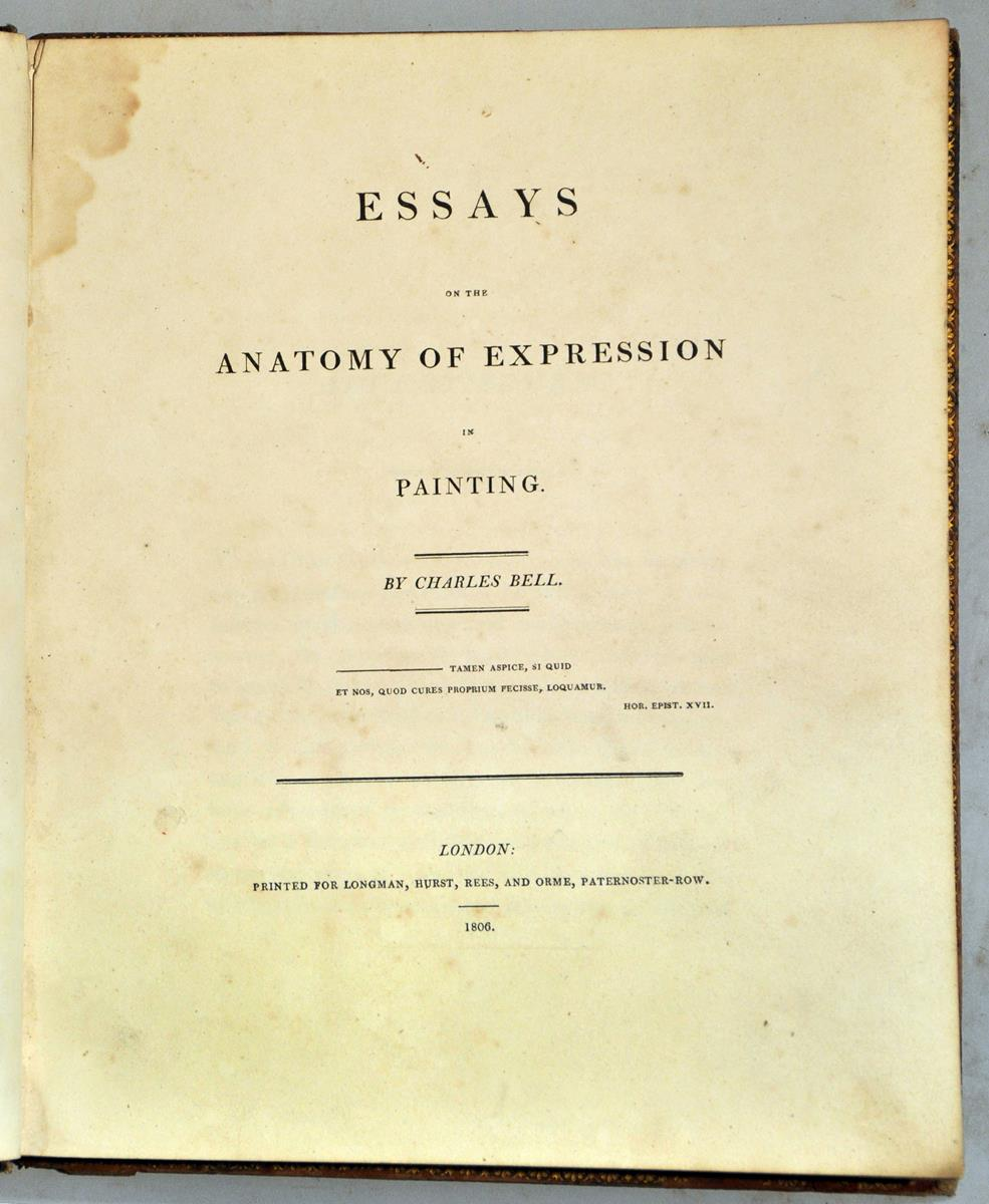 anatomy essays a book essays on the anatomy of expression in ...