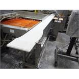 ARR Tech conveyor, plastic interlock belt 86 in. long x 14 in. wide x 38 in. tall / Rigging Fee: $30