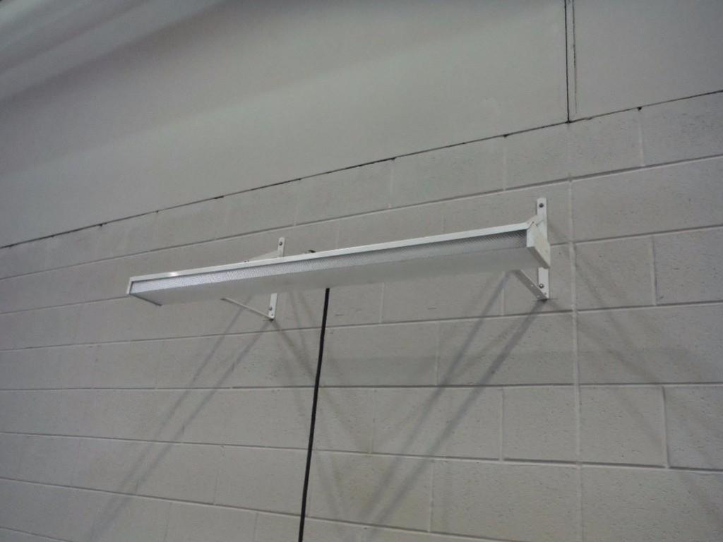 Fluorescent wall light / Rigging Fee: $20