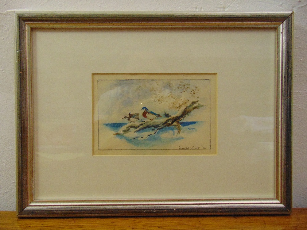 Donald Brook framed and glazed watercolour of ducks, signed bottom right, 10 x 16cm