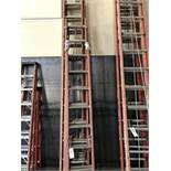 (3) Large Ladders