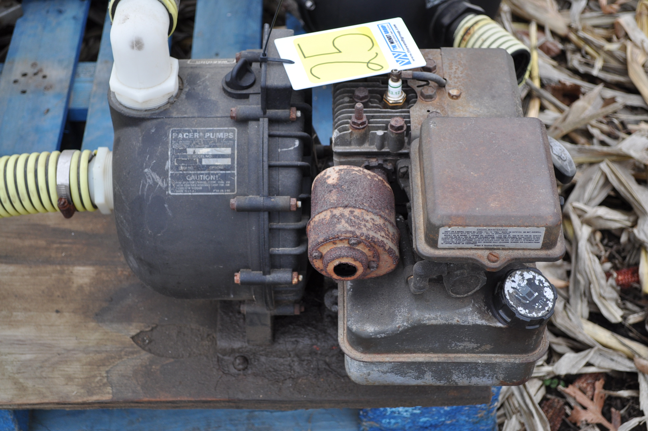 "2"" transfer pump, Briggs and Straton, Pacer poly pump"