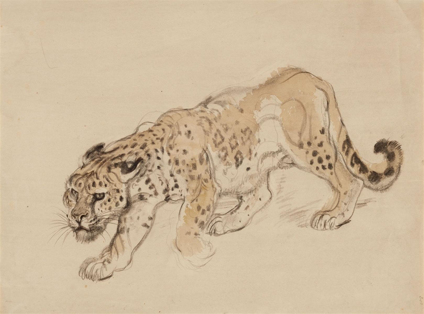Los 53 - Schleichender LeopardAquarell über Kohle auf Papier. Monogrammiert unten rechts lhj. 35,5 x 47,5 cm.