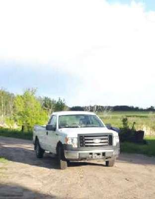 Lot 41 - 2010 Ford F150 XL truck, regular cab, 5.4L V8, 4x4