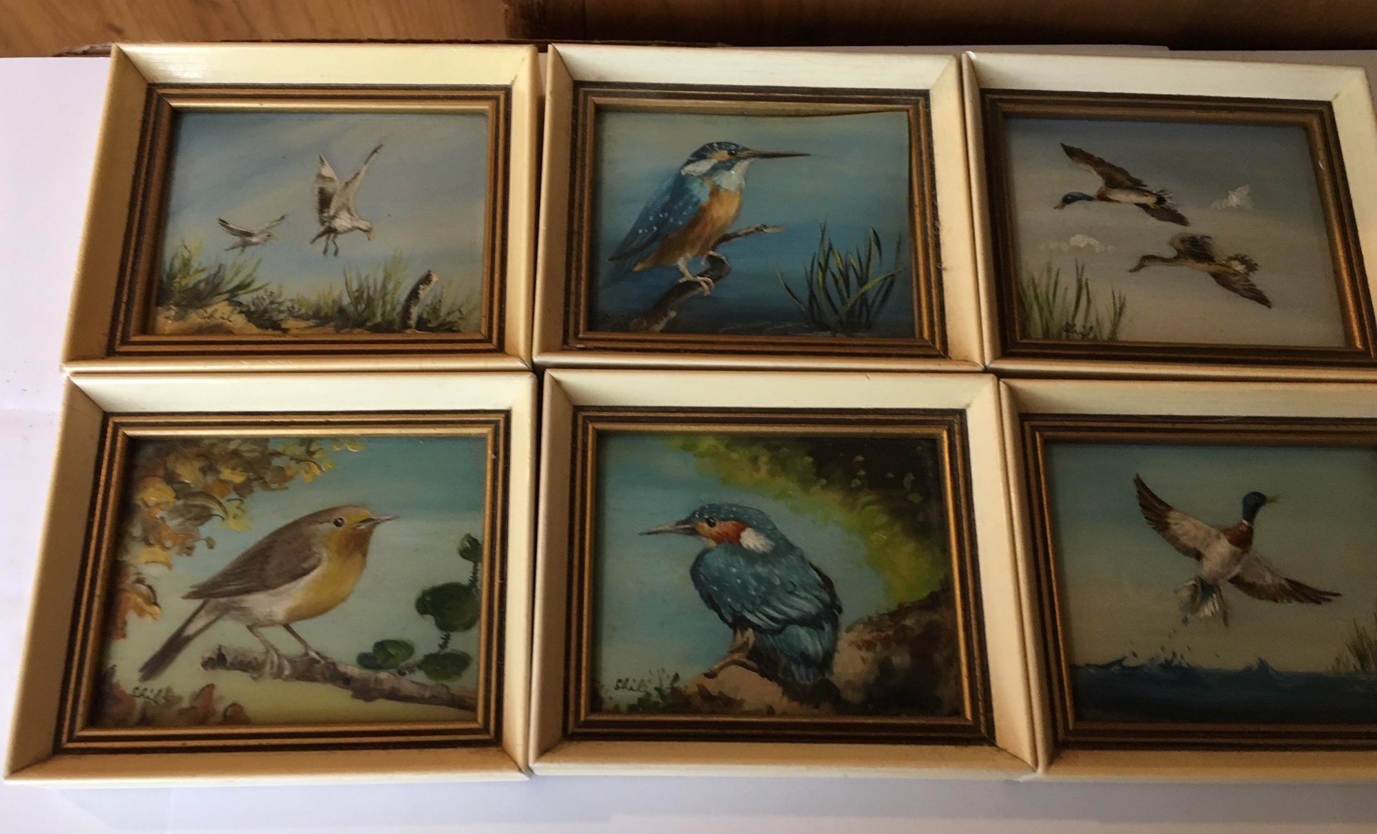 Lot 31 - Vintage Lot of 6 signed Framed Miniature Oil Paintings of Birds by Hamilton Studio Rugby c1950s.