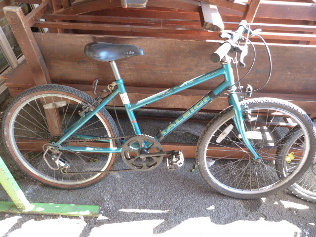 Lot 6 - Raleigh Oasis Mountain Bike