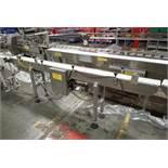 2007 Benchmark Automation belt conveyor