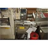 Ramsey Icore autocheck 4000 checkweigher