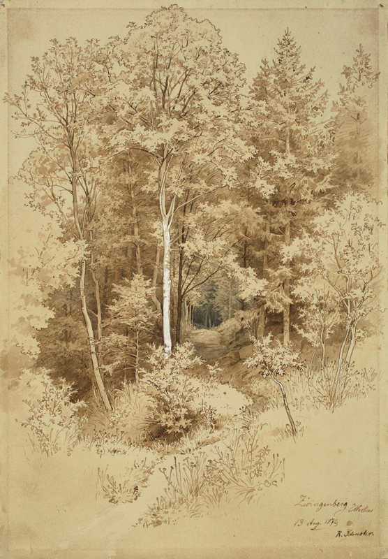 Lot 148 - Rudolf Schuster (1848 – Markneukirchen – 1902)WALDSTUDIE IN ZWINGENBERG AM NECKAR. 1872Feder in