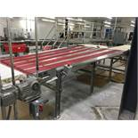 2013 Dual Lane Banjo Conveyor, 53in Wide at Inlet, 80in Wide at Discha | Insp by Appt | Rig Fee: 200