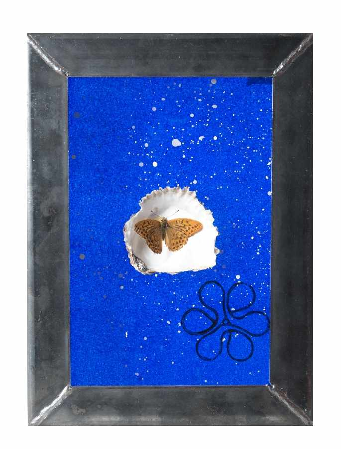 Ugo Dossi1943 MünchenUntitled (Collage)Prepared butterfly and shell, collaged on glass with paint