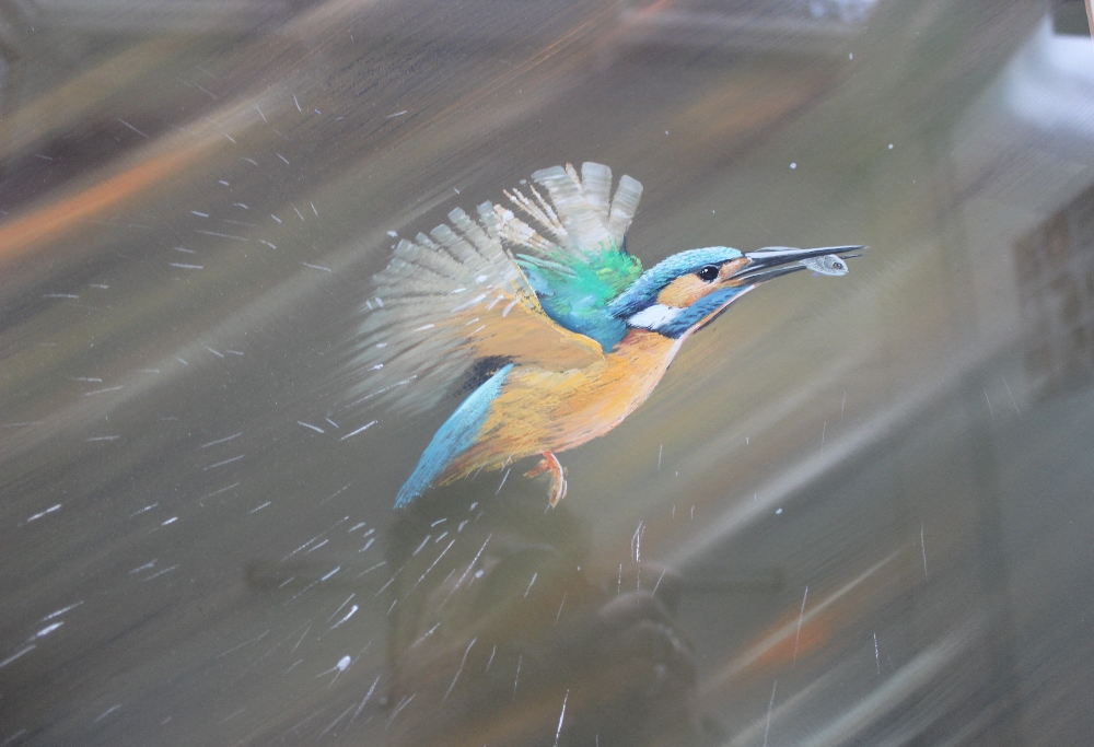 Pollyanna Pickering A Kingfisher with a fish in its beak leaving the water Acrylics Signed and