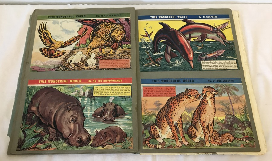 """Lot 37 - A vintage scrap book containing a quantity of animal pictures and facts from """"This Wonderful World""""."""