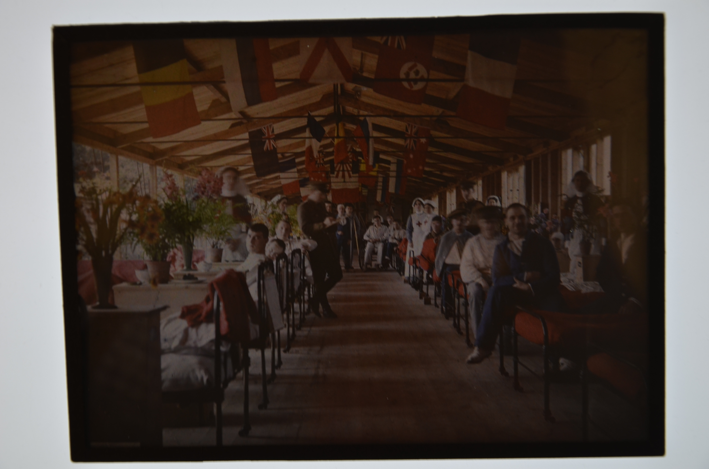 Lot 519 - Two half-plate Autochromes, of the First Eastern General Hospital on The Backs in Cambridge circa