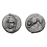 Lot 8 - Lucania, Velia. 330 BC. Didrachm, 7.13g (4h). Obv: Head of Athena three-quarter face to left,