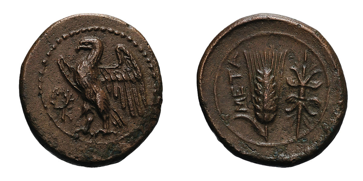Lot 5 - Lucania. Metapontum. c. 300-250 BC. AE 17, 4.50g (12h). Obv: Eagle standing left, wings spread;