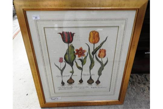 Auction Date