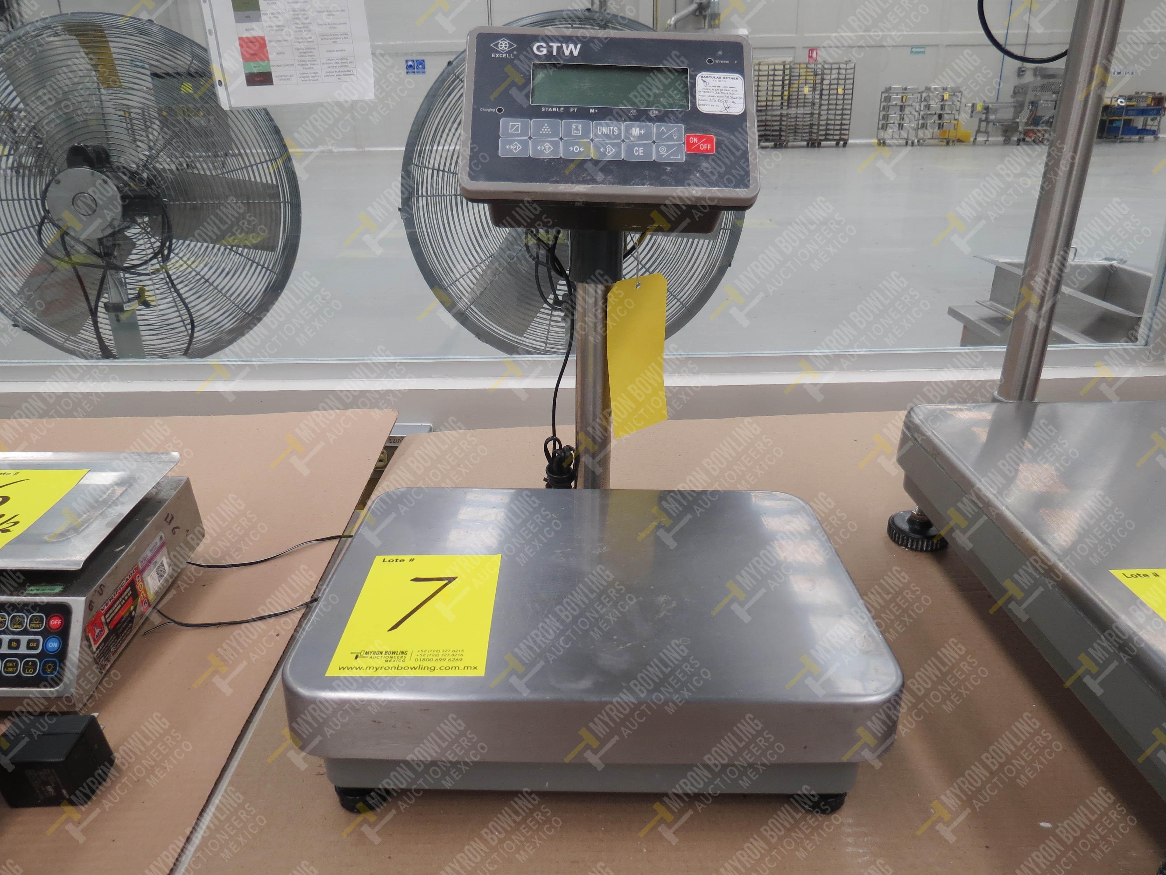 Báscula digital marca Excell. Modelo GTW, No. de Serie A13412794