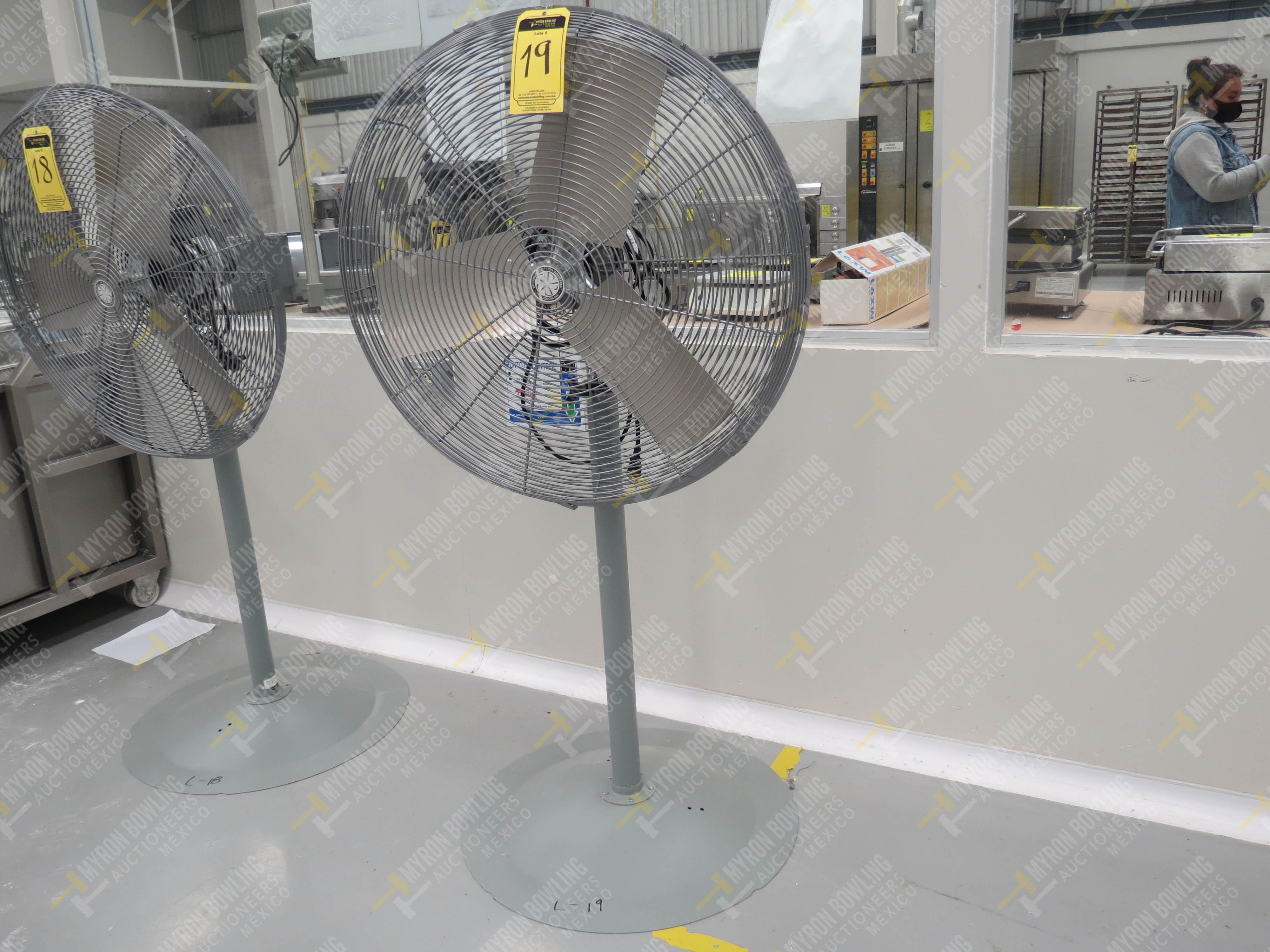 Ventilador de pedestal de 80 cm de diámetro marca TPI Industrial, Modelo CK48HF12JS26, … - Image 2 of 4