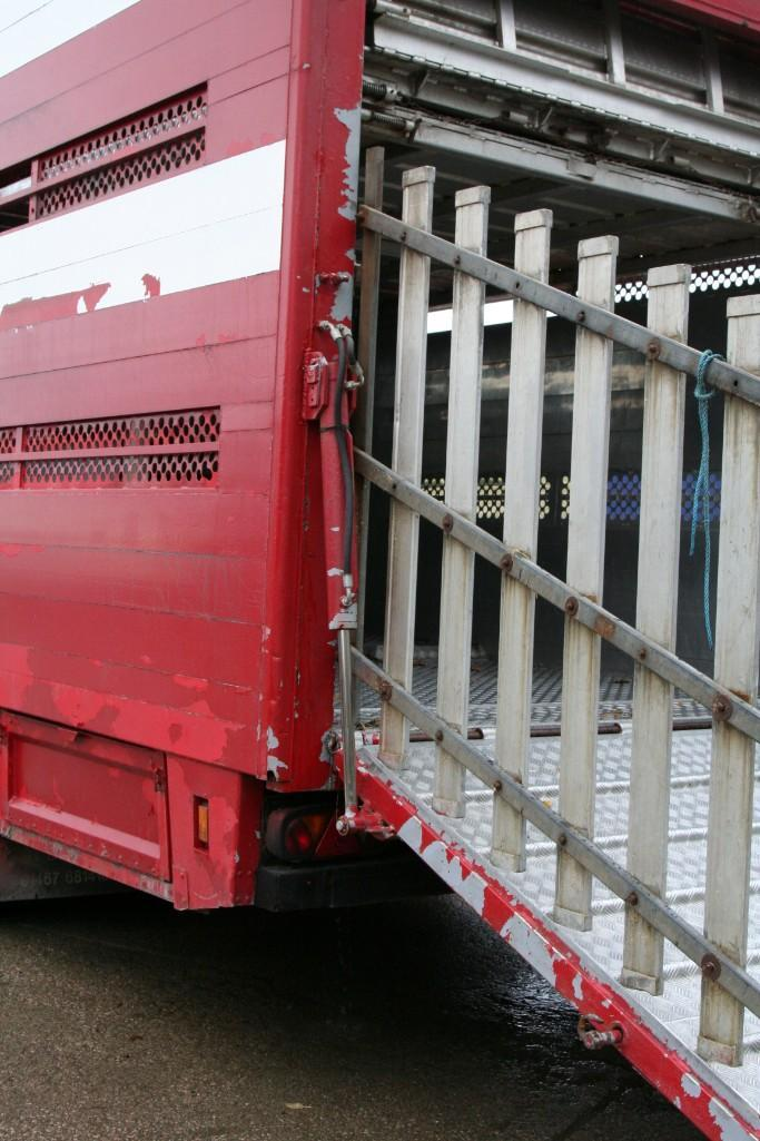 Lot 4100 - 45 FT STEWART LIVESTOCK TRAILER