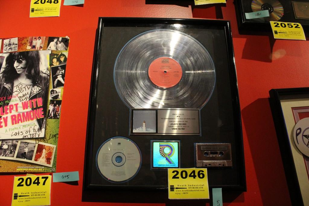 "Tori Amos Commemerative ""Under The Pink"" Framed Platinum Display"