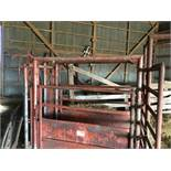 Manual Catch Cattle Chute