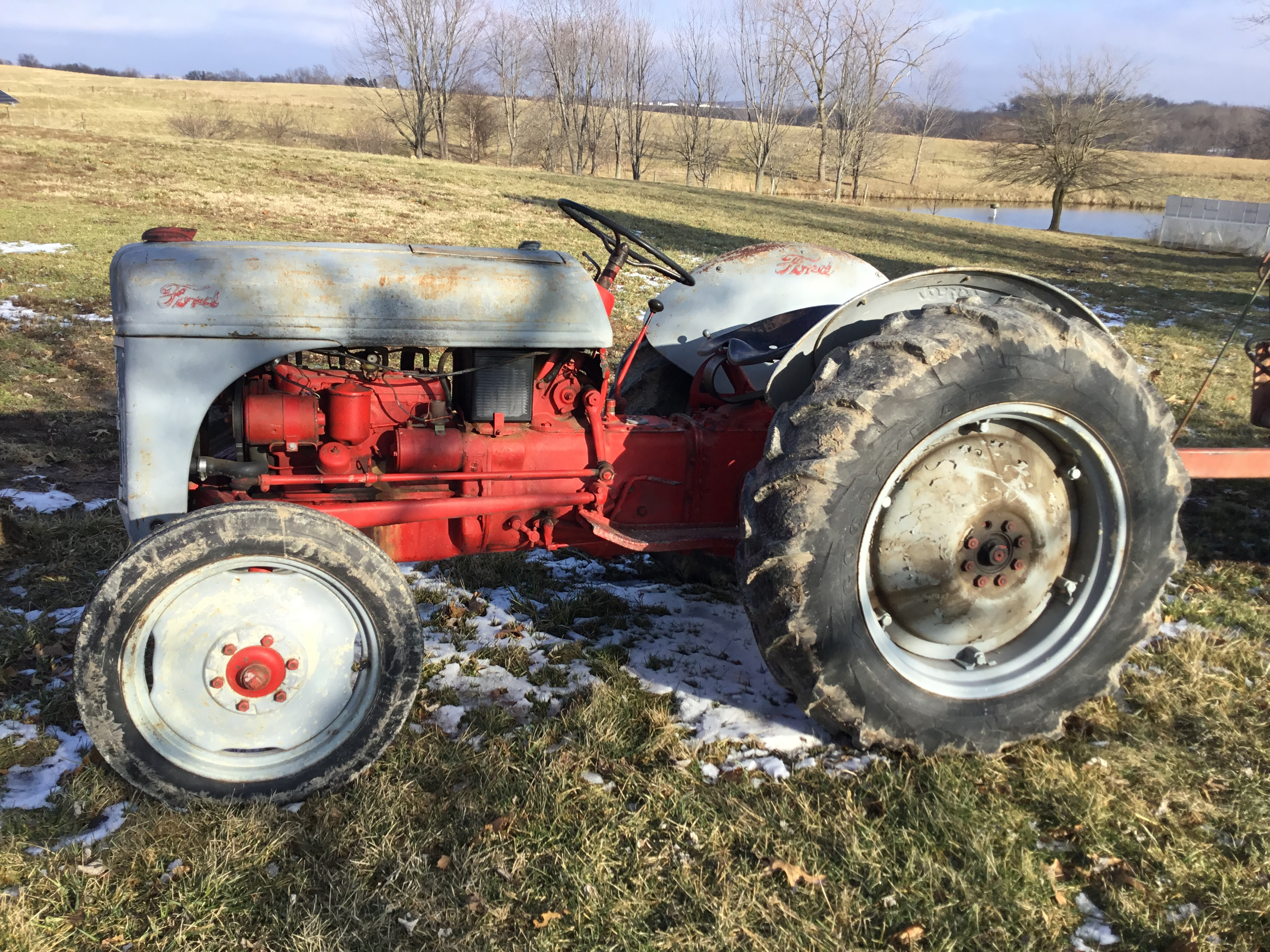 1951 8N Ford Tractor