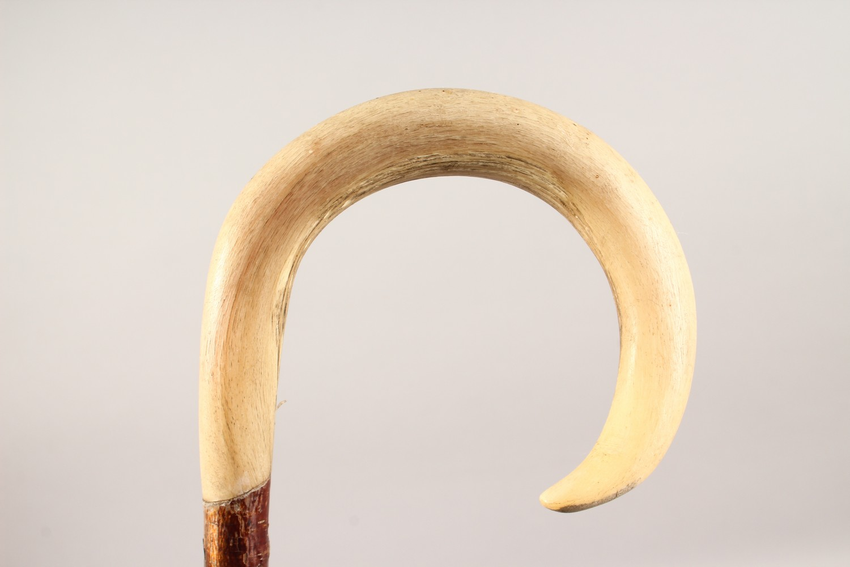 Lot 1517 - A HORN HANDLED SHEPHERD'S CROOK, with barley twist shaft. 48ins long.