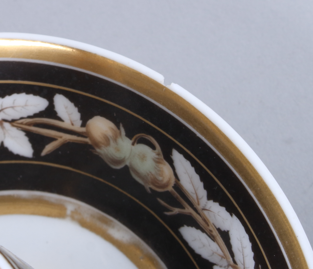 Lot 19 - A 19th century French porcelain cabinet cup and saucer with hazel nut decoration (rim chip to
