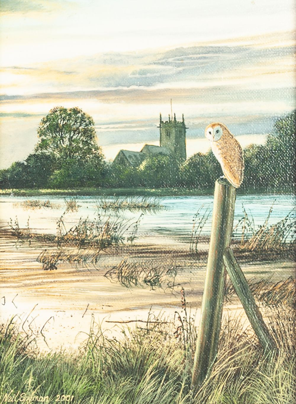 Lot 242 - NEIL SPILMAN (b. 1951) OIL PAINTING ON BOARD 'Waiting for Evening', barn owl in a landscape Signed