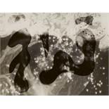 Anneliese HagerOhne TitelVintage, Photogramm auf Agfa-Papier. 17,5 x 23,7 cm. Rückseitig mit Tinte