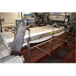 "Custom Designed and Fabricated 42""W x 9'6"" L, Stainless Steel Inspection Belt Conveyors"