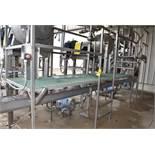 Stainless Steel Platform/Catwalk, Loading Fee: $1250