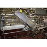 Canners Machinery Stainless Steel Can Washer Set, on 401X411, Loading Fee: $100