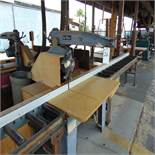 DeWalt 18'' Radial Arm Saw w/ Conveyor