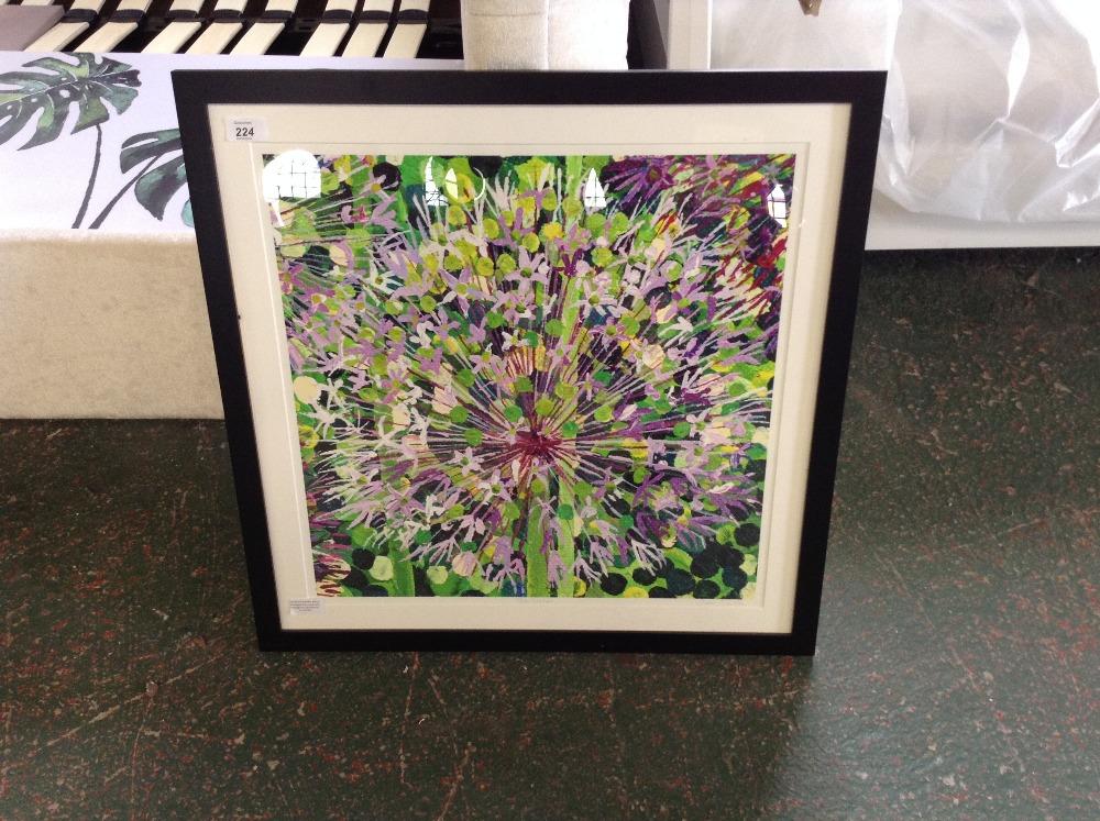 Lot 224 - Susan Entwistle 'Allium Christophii' Framed Acryli