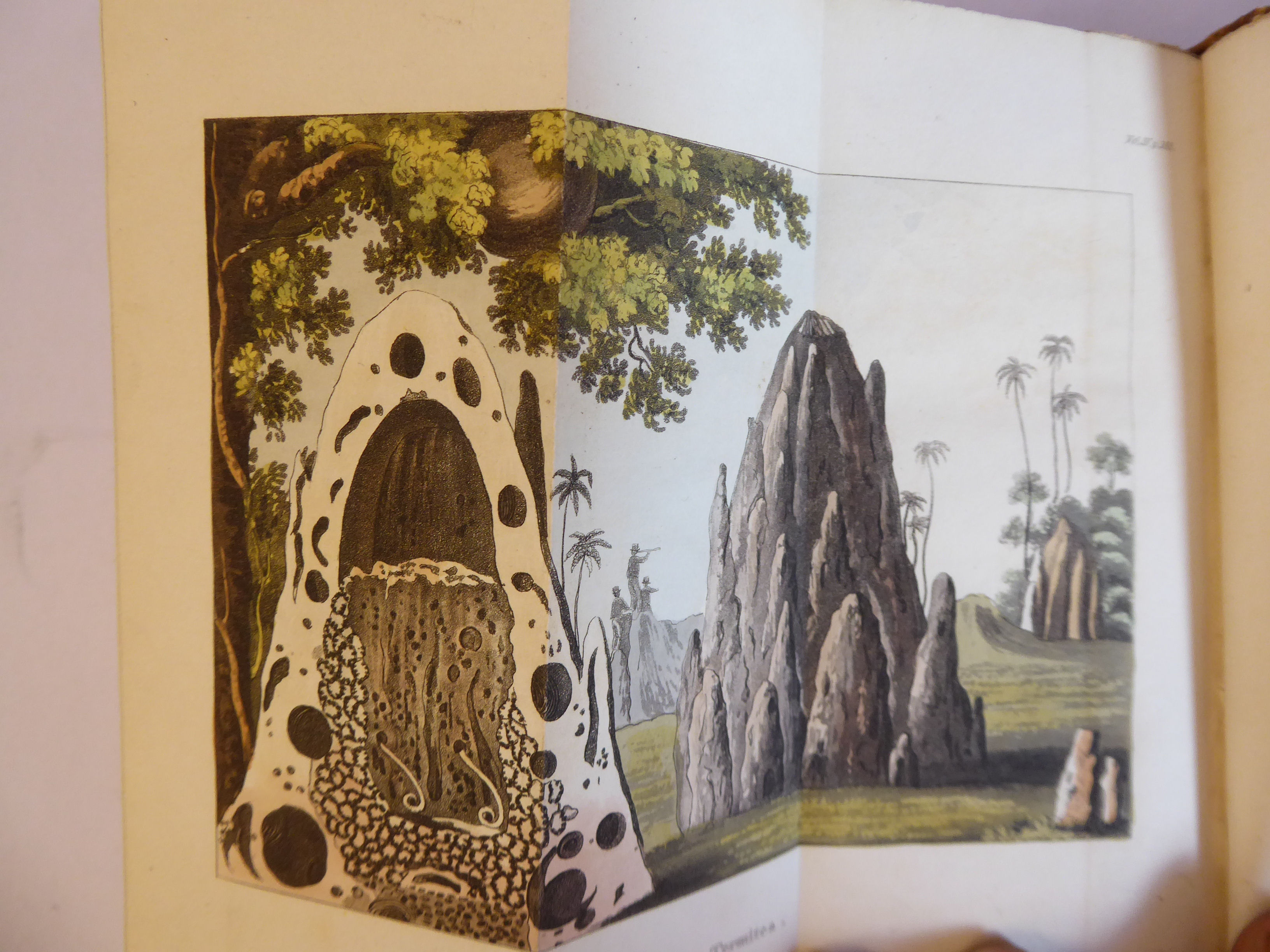 Lot 49 - Books: 'The World in Miniature - Africa .....