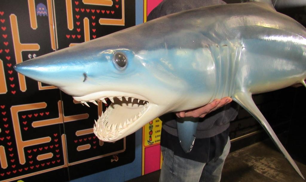 """Lot 2006 - MAKO SHARK TROPHY SHARK MOUNT REPLICA 72"""" LENGTH"""