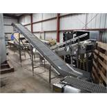 SS incline conveyor, grey plastic interloc belt, 212 in. long x 16 in. wide x 24 in. on low end and