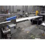 SS conveyor, white vinyl belt, 198 in. long x 11 in. wide, 1 hp motor and drive ** Rigging Fee: $ 10