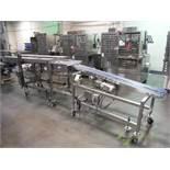BMI dual lane belt conveyor, blue sanitary belts, 80 in. long x 3.5 in. wide x 33 in. infeed x46 in.