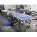 BMI belt conveyor, blue sanitary belt, 144 in. long x 39 in. wide x 40 in. tall, with Allen Bradley