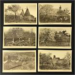 BLOSSOM TIME IN KENT SERIES COMPLETE SET OF SIX POSTCARDS BY THE TIMES