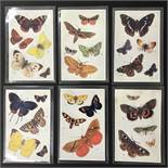 RAPHAEL TUCK BUTTERFLIES ON THE WING SERIES I NUMBER 3390 COMPLETE SET OF SIX POSTCARDS