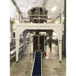 WEIGHING AND BAGGING SYSTEM