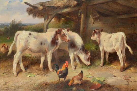 Walter Hunt (1861-1941) Calves feeding at a trough in a stable yard