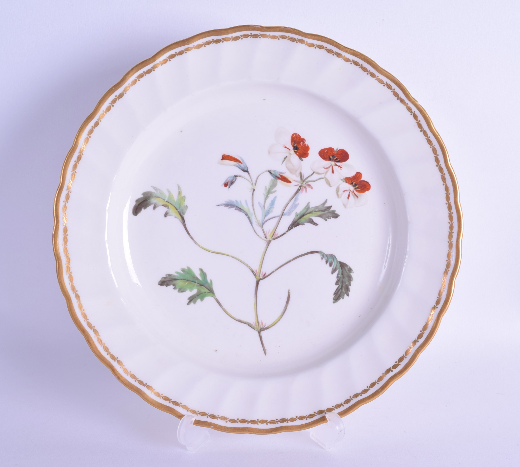 Lot 124 - Late 18th c. Derby plate painted with a botanical study entitled 'Pelargonium Tricolour' 'The -